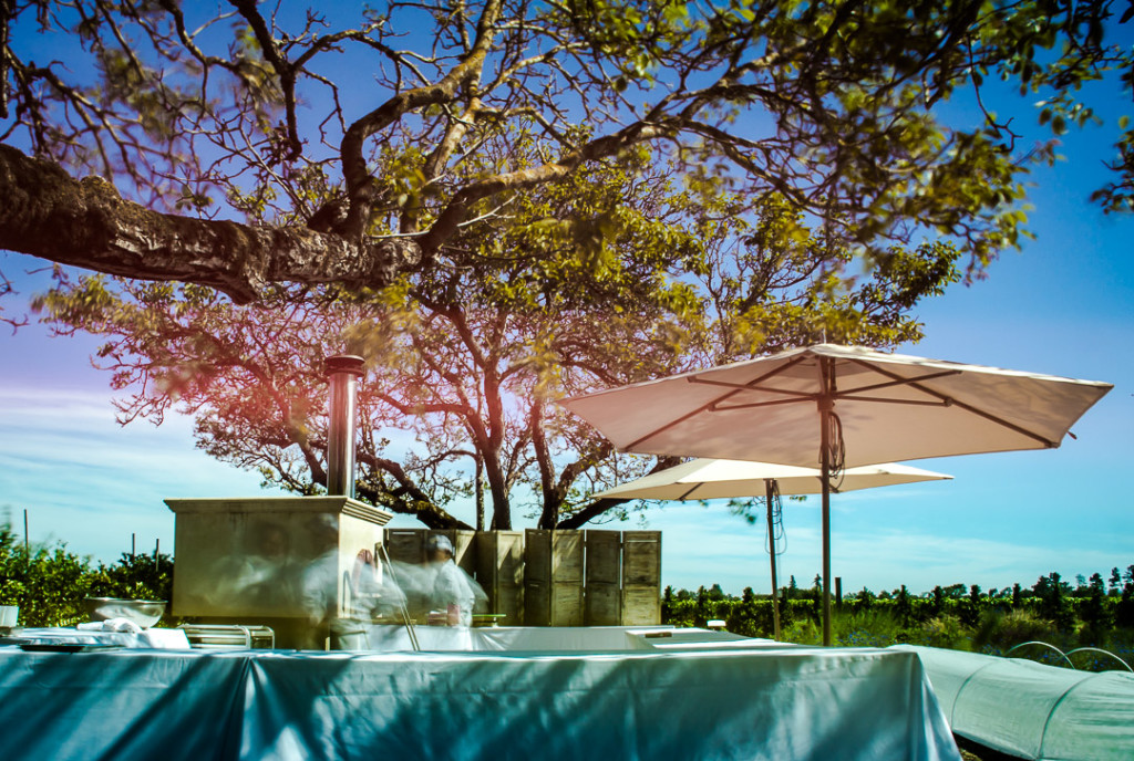 The Kendall-Jackson Wine Estate and Gardens.