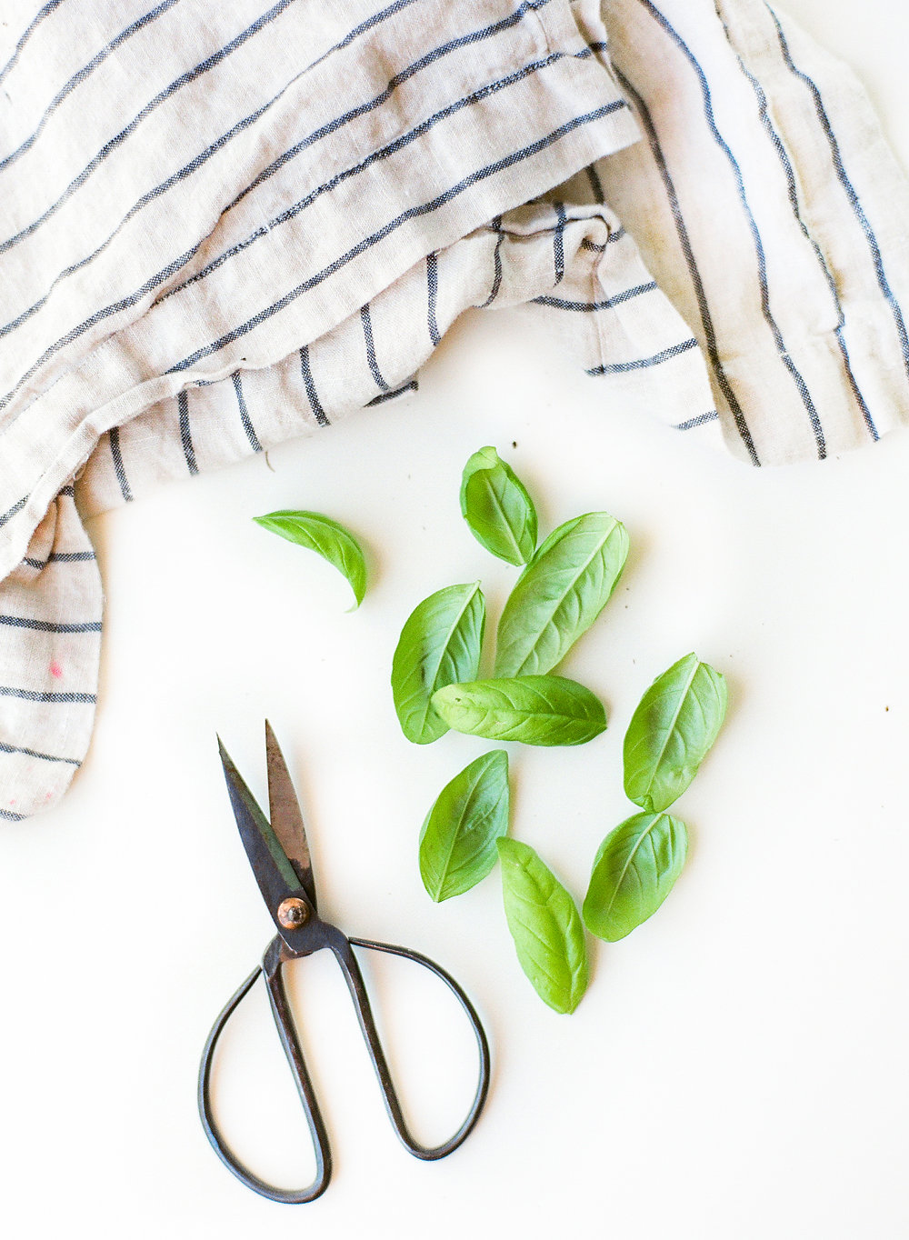 Now it's time to eat! You know the drill, pour yourself a glass of wine (we love the Kendall-Jackson Vintner's Reserve Chardonnay) and step to it. This Lemon Verbena Basil Pesto pasta dish is absolutely divine and it's the perfect introduction to your new #DIY herb garden..