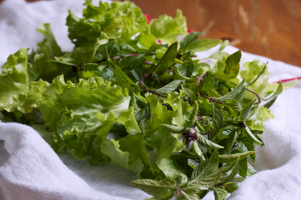 Thai Herb Salad for summer eating, a recipe for one, made more delicious with a spicy dressing, fried cashews, and crispy garlic.