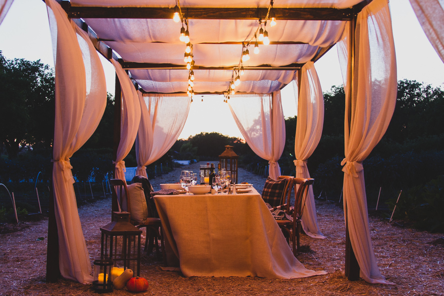 Here's a few simple tips on how to host a memorable farm-to-table dinner. #fall