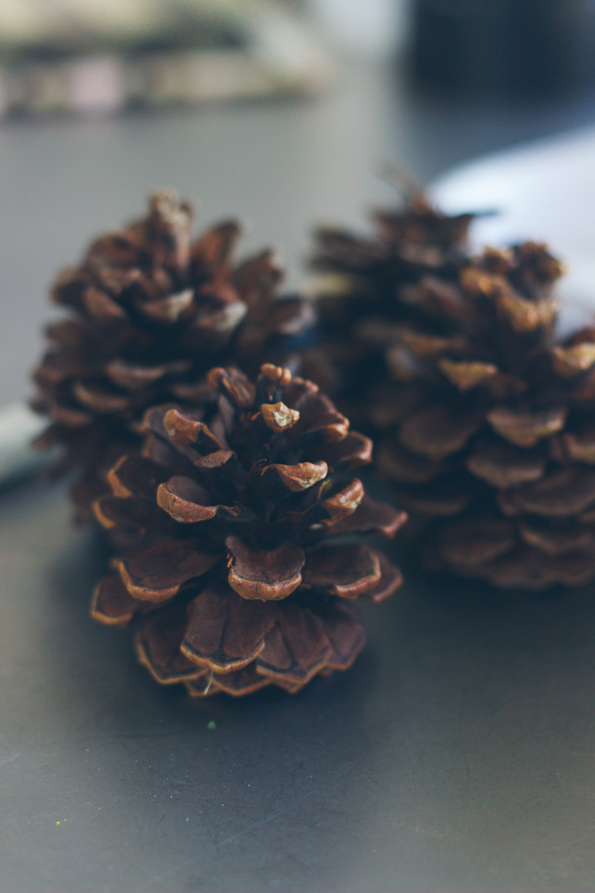 1-diy-pine-cone-place-setting