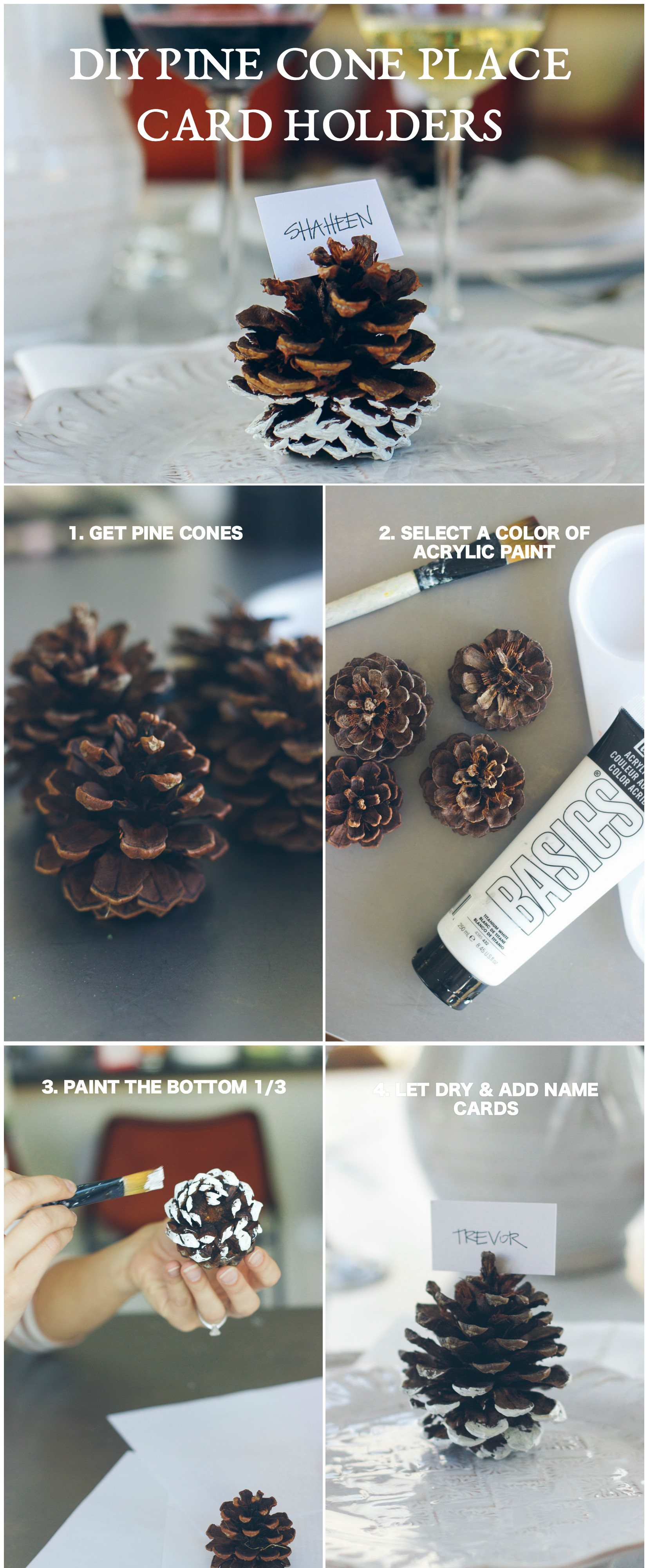 pine-cone-diy-collage