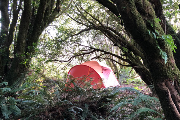 Sonoma County Camping