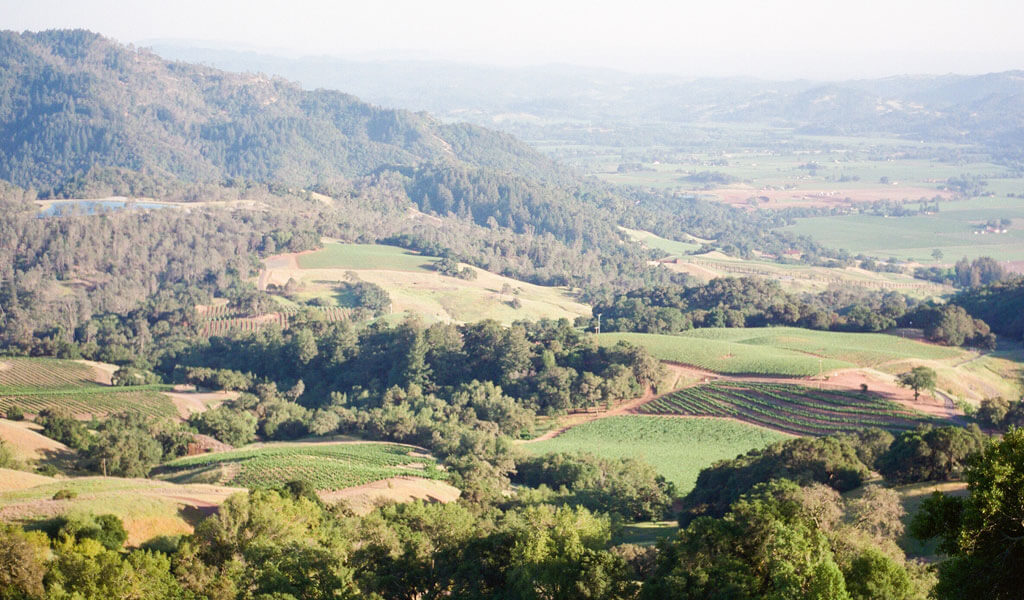 Jess purchases the 8,000 acre Gauer Ranch along the Mayacamas Mountains in Alexander Valley