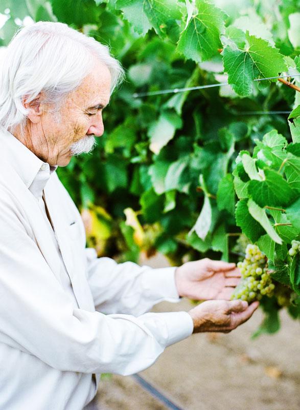 kendall-jackson-winemaster-randy-ullom