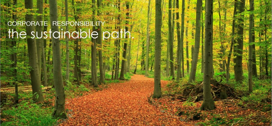 Sustainable Path