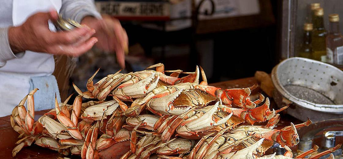 Dungeness Crabs on Fishman's Wharf