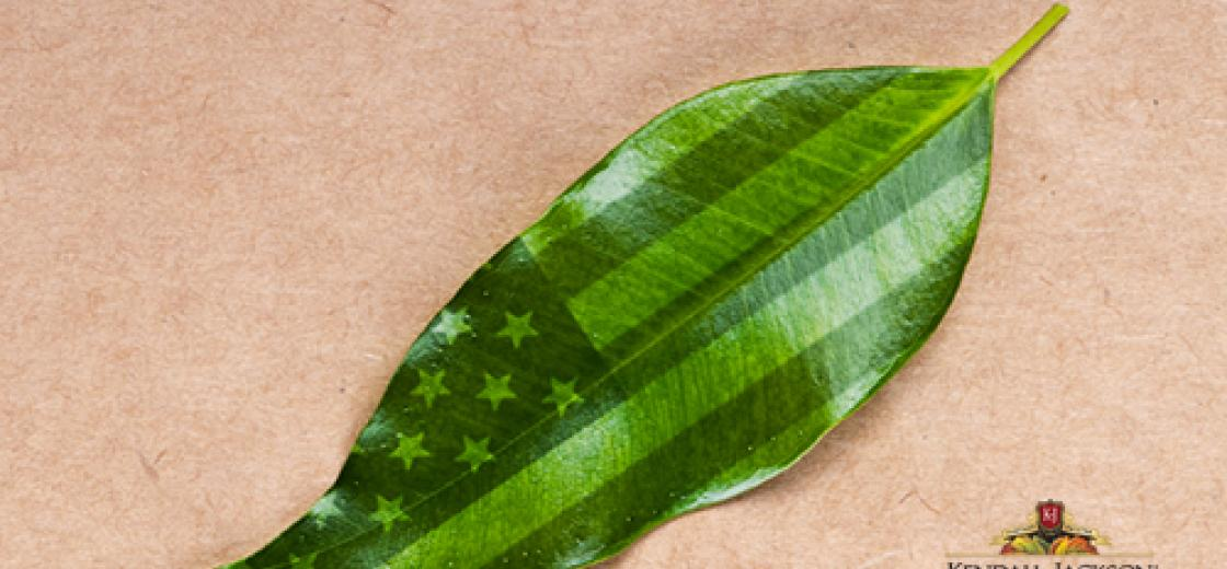 KJ_leaf_flag_blog_070213