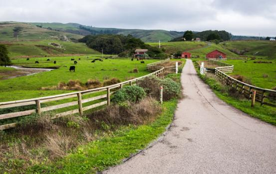 Fun Things to Do in Sonoma County