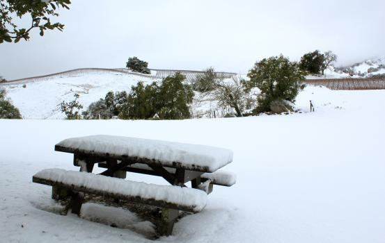 AME_SnowPicnicTable