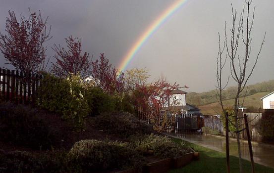Healdsburg Rainbow