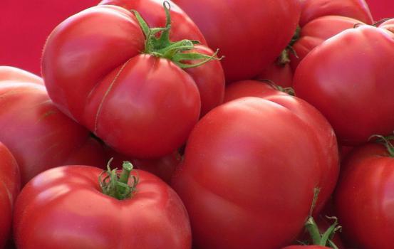 Tomato Tip