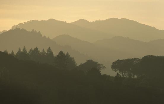 Coastal Ridgetops (2)