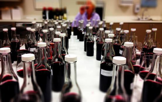 BordeauxTasting2