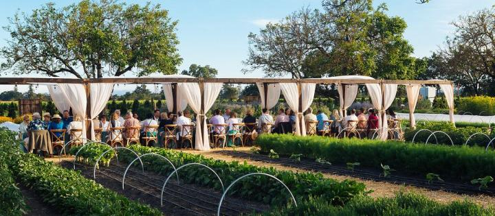Farm to Table Dinner series